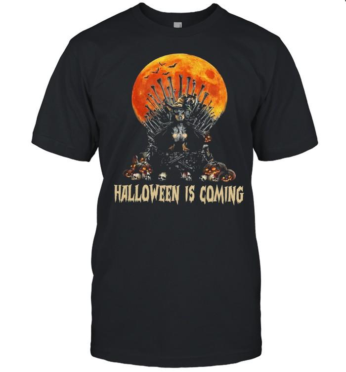 Dachshund Witch Halloween Is Coming shirt Classic Men's T-shirt