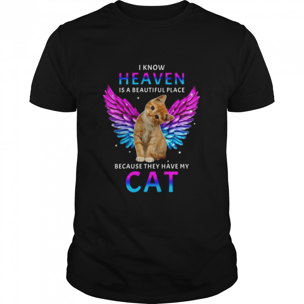 Cat Angel I Know Heaven Is A Beautiful Place Because They Have My Cat T-shirt